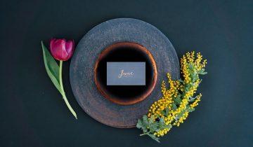 June CHEESECAKE, History…Ⅰ